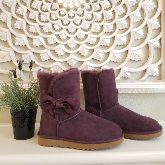 aa3d80dc791 BNWB! UGG Daelynn Short Boots NWT